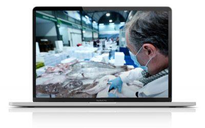 """""""El Papel de la Veterinaria en la Sociedad"""", una serie de mini-videos documentales para mostrar las áreas de la Veterinaria a través de los Veterinarios colegiados"""