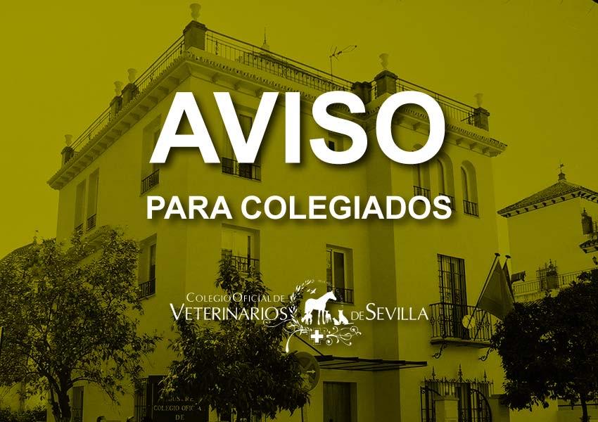 Suspendidos los actos a celebrar por San Francisco de Asís por motivo de las medidas sanitarias frente a la COVID-19