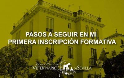 ¿Es la primera vez que te inscribes en un Seminario Online del I.C.O.V. de Sevilla?