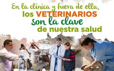El CACV lanza una campaña sobre las funciones y competencias de los veterinarios menos conocidas por la sociedad