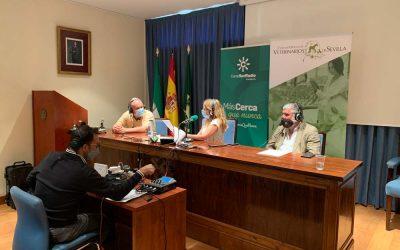 """""""Mediodía Sevilla"""", de Canal Sur Radio, en directo desde el Colegio de Veterinarios de Sevilla"""
