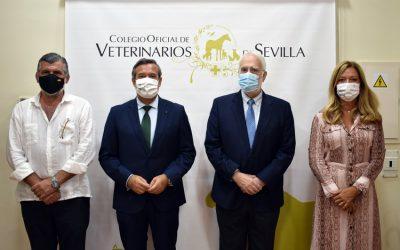 El Colegio de Veterinarios de Sevilla y la Fundación San Pablo Andalucía-CEU firman un Convenio Marco para la organización de un curso de experto sobre Gestión y Dirección de Centros Veterinarios