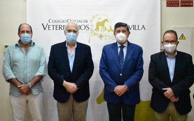 El Colegio Oficial de Veterinarios se reúne con el Colegio Oficial de Farmacéuticos de Sevilla para abordar varias temáticas de interés común