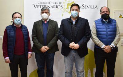 El Colegio Oficial de Veterinarios se reúne con representantes del Grupo Popular del Ayuntamiento de Sevilla