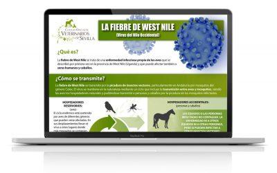 Infografía: la fiebre de West Nile